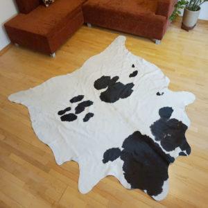 bielo-cierna hovadzia koza